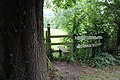 All Saints Church, Nazeing, Essex, England ~ churchyard west style 02.JPG