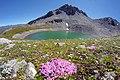 Alpy, Aosta, Itálie, Švýcarsko, imgp4810 (2016-08).jpg