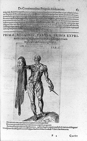 File:Robert Fludd, Anatomiae amphitheatrum effige Wellcome L0028878 ...