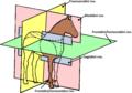 Anatomické řezy a roviny zvířat (kůň).png