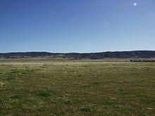 grassland ecosystem in india