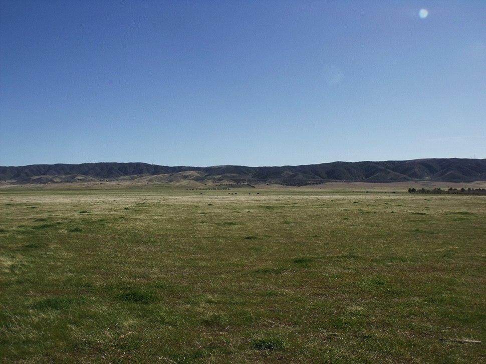 AntelopeValleyCAgrassland