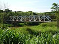 Antiga ponte ferroviária Ytuana-Sorocabana sobre o Rio Capivari, limite dos municípios de Capivari e Rafard - panoramio (2).jpg