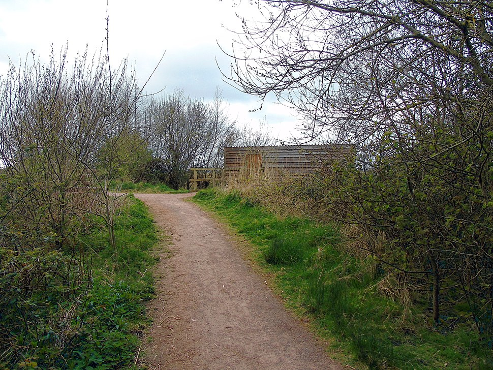 Approaching Bird Hide from Woodland Trail at Newport Wetlands RSPB Reserve