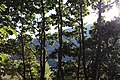 Arzakan-Meghradzor Sanctuary 033.jpg