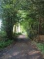 Ashotts Lane, Chartridge - geograph.org.uk - 167580.jpg
