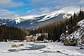 Athabasca River and the Maligne Range.jpg