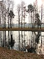Auschwitz II-Birkenau - Death Camp - Pond Where Ashes of Gassed Victims Are Buried - Near Crematorium IV - Oswiecim - Poland.jpg