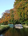 Autumn colours by the Staffordshire and Worcestershire Canal - geograph.org.uk - 1026568.jpg