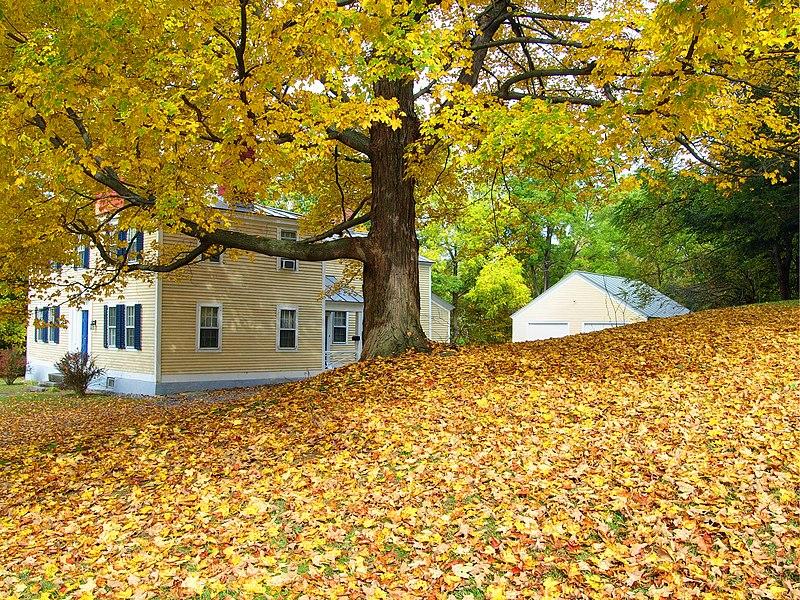 File:Autumn in Springfield VT.jpg