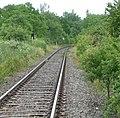 Bahnlinie nach Dürkheim - panoramio.jpg