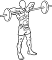 Barbell-upright-rows-1.png
