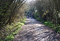 Barley Lane - geograph.org.uk - 1855994.jpg