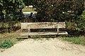 Bassin de Saulx à Saulx-les-Chartreux le 21 août 2015 - 19.jpg