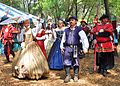 Bay Area Ren Fair Tampa 2012 Royal Parasol.jpg