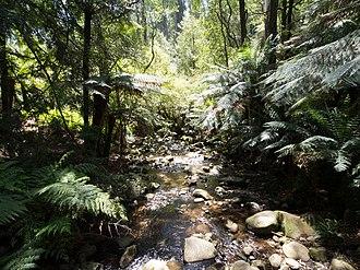 Badger Creek, Victoria - Image: Beautiful badger creek