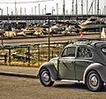 Beetle (1032590725).jpg