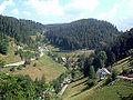 Bei Gütenbach.JPG