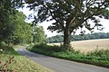 Bend in Tumbley Hill Road - geograph.org.uk - 565255.jpg