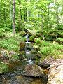 Bergbach im Sagwassertal.jpg