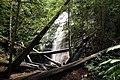 Berry creek - panoramio.jpg
