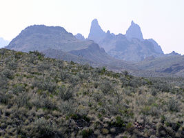 Big Bend National Park PB112560.jpg