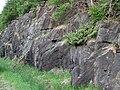 Big garnet amphibolite (Precambrian; Warrensburg, Adirondack Mountains, New York State, USA) 1.jpg