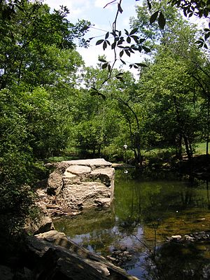Cherokee Park - Big Rock