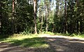 Bike trail between Grabacz and Kopaniarze - panoramio.jpg