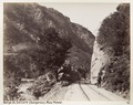Bild från familjen von Hallwyls resa genom Mindre Asien och Turkiet 27 April - 20 Juni 1901 - Hallwylska museet - 103231.tif