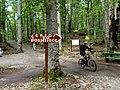 Biogradska gora - National Park, the oldest protected natural resource in Montenegro 04.jpg