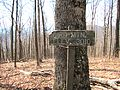 Bird-mtn-low-summit-sign-tn1.jpg