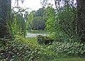 Birr Castle gardens - geograph.org.uk - 1364567.jpg