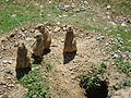 Black-tailed prairie dogs, Hershey PA.jpg