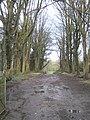 Blessingborne Park, Fivemiletown - geograph.org.uk - 309179.jpg