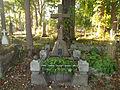 Bolekhiv N Kobrynska grave-1.JPG