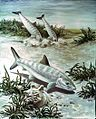 Bonefish art image.jpg
