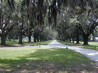 Mount Pleasant, South Carolina - Boone Hall in Mount Pleasant