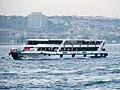 Bosphorus, Istanbul (P1100297).jpg