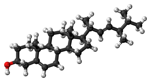 520px-Brassicasterol_molecule_ball.png