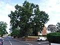 Brentford.B425.Windmill Road.DSCF0430.jpg