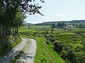 Bridleway by Nant Cou near Tregaron, Ceredigion - geograph.org.uk - 1184658.jpg