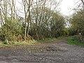 Bridleway to Highworth - geograph.org.uk - 1599707.jpg