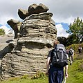 Brimham rocks from Flickr (A) 08.jpg