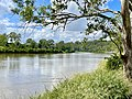 Brisbane River at Seventeen Mile Rocks, Queensland, 2021, 01.jpg