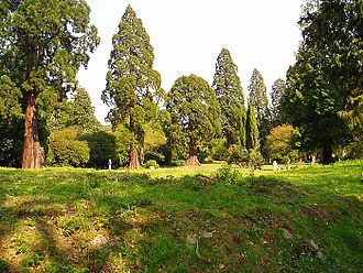Brookwood Cemetery - The rate of burials was much lower than anticipated by the London Necropolis Company and around 80% of graves are unmarked, making Brookwood distinctively uncluttered when compared to other cemeteries.