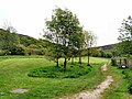 Buckton Moor, Carrbrook - geograph.org.uk - 1320046.jpg