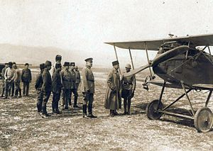 Halberstädter Flugzeugwerke - Flying Ace Hans-Joachim Buddecke next to his Halberstadt CL.IV, with General Otto Liman von Sanders, Turkey, 1917