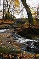 Bullough's Pond P1010477.jpg