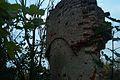 Burgruine Marstetten rechter Rundturm.jpg